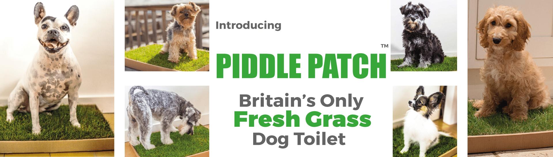 Britain's only fresh grass dog litter
