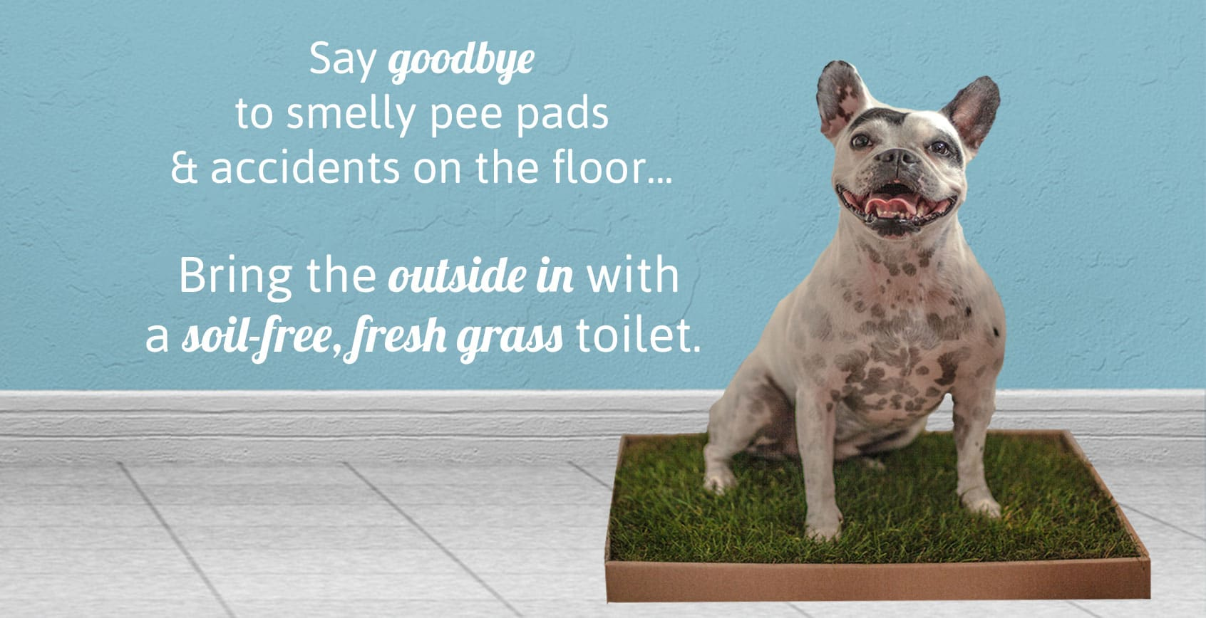 A natural alternative to pee pads.