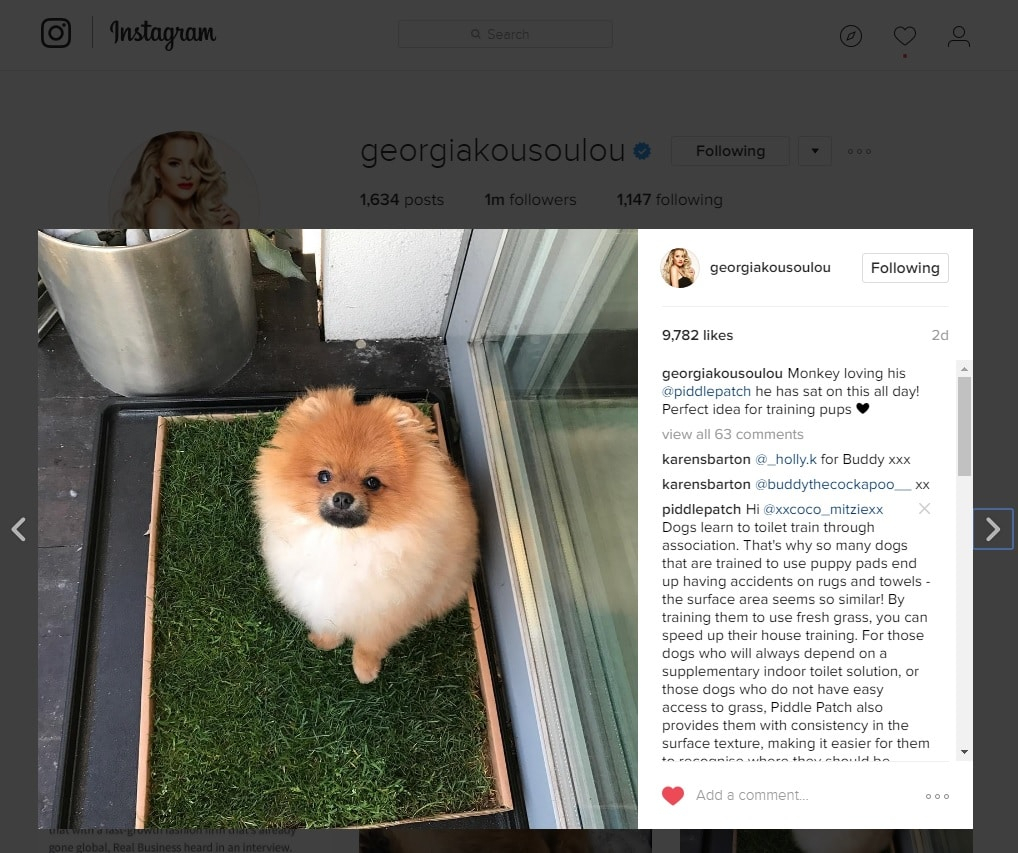A screenshot of Georgia Kousoulou's instagram page with a photo of her Pomeranian dog using Piddle Patch.